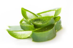 aloe plant for detoxing
